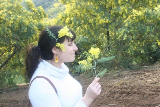 Boucles d'oreilles jaunes en nacre, au milieu du mimosa.