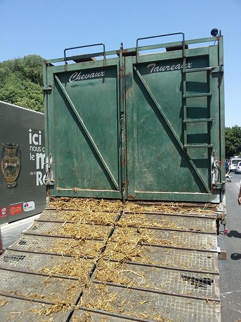 camion qui transporte les taureaux lors d'ne abrivado de la feria de Nîmes 2014