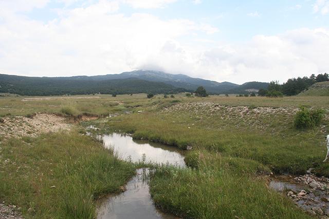 Plateau de Gréolières.
