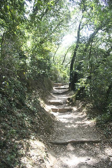 Sentier de randonnée au pont du Gard.