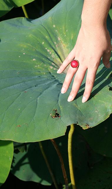 Bague vernis rouge à paillettes Divine et Féminine au dessus des lotus géants de l'étang de Fontmerle.