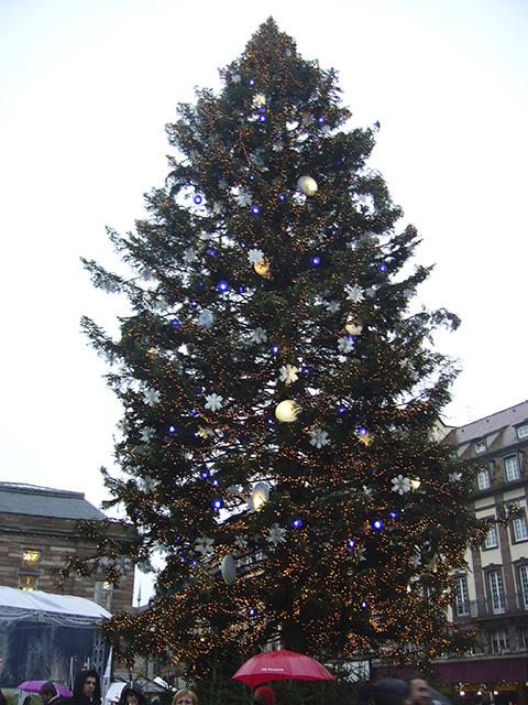 Sapin de Noël géant place Kleber à Strasbourg