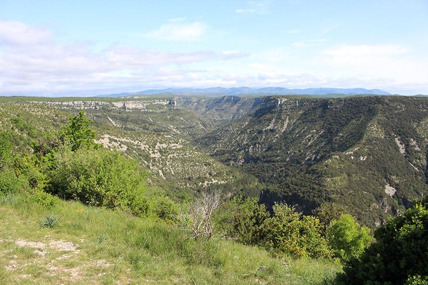 Chaîne montagneuse des Cévennes.