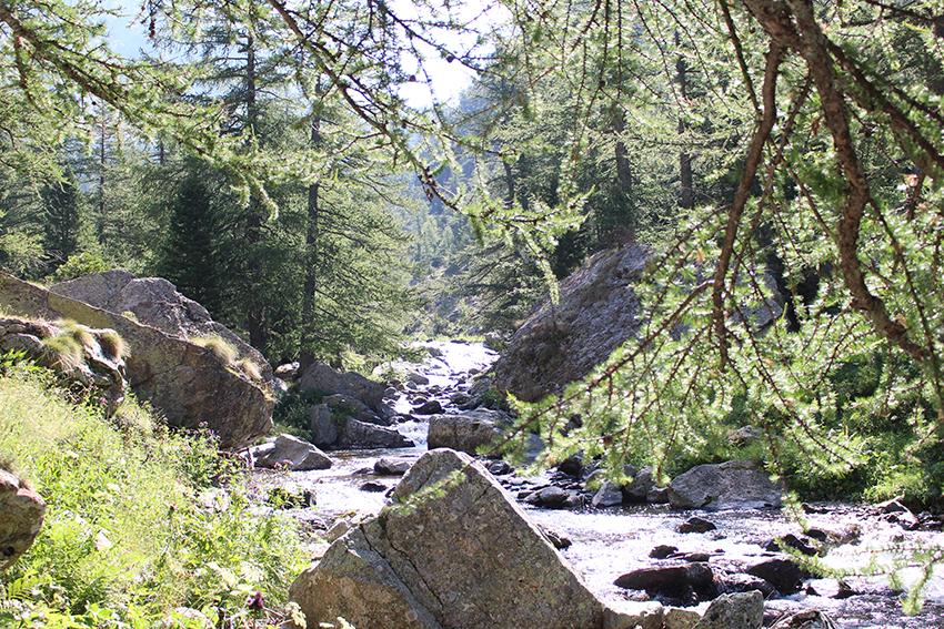Randonnée Boréon, vers le Lac de Trécolpas.