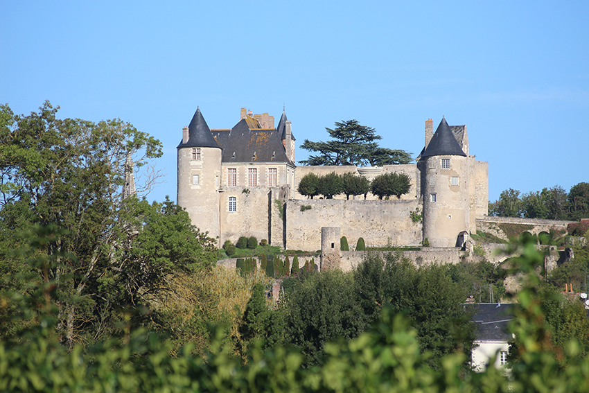 Château de Luynes.