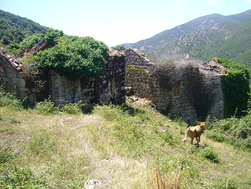 Ruines du village abandonné de Monticchi, en Corse.
