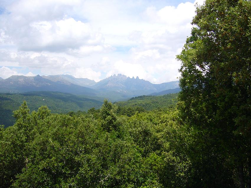 Vue sur les aiguilles de Bavella, depuis le site de Cucuruzzu, en Corse.