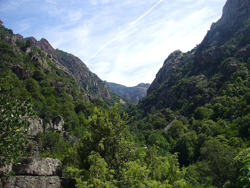 Randonnée nature en Corse, dans les gorges de Spelunca.