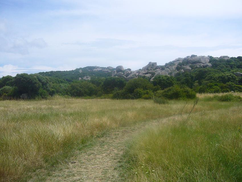 Randonnée nature sur le plateau de Cauria, en Corse.