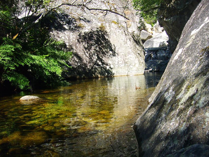 Ruisseau de Monticchi, en Corse.