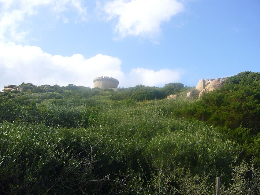 Tour de Campomoro, en Corse.
