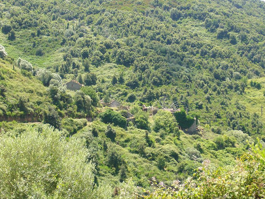 Village abandonné de Monticchi, en Corse.