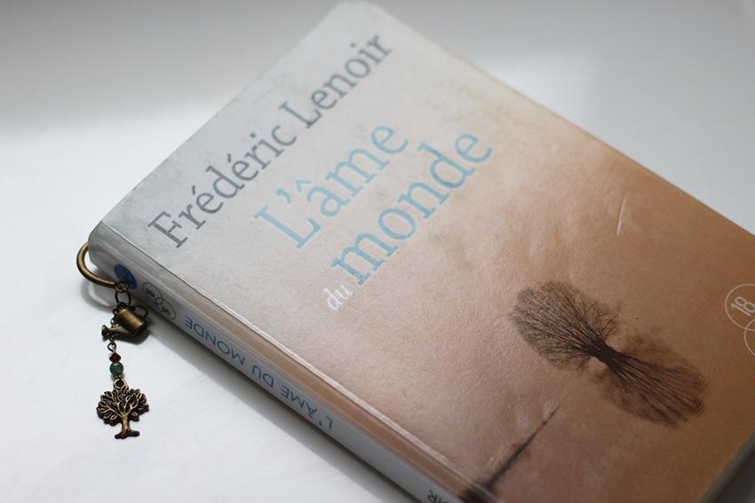 L'âme du monde, conte philosophique de Frédéric Lenoir.