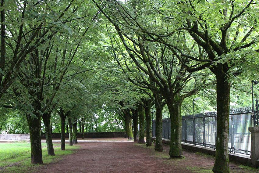 Jardin des senteurs, à Chambéry.