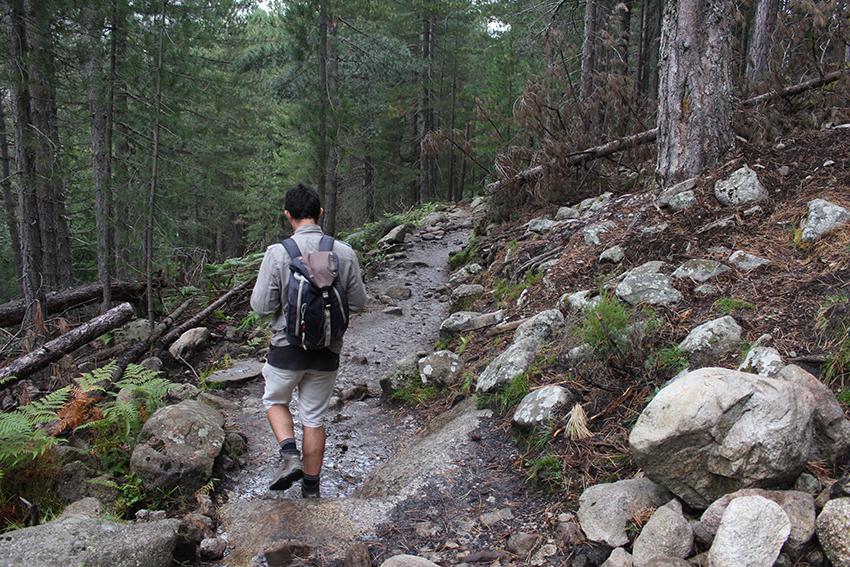 Randonnée dans la forêt vers le lac de Creno, en Corse.