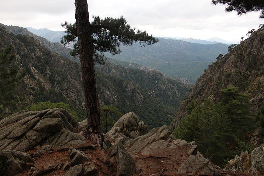 Vue vertigineuse sur la vallée depuis le lac de Creno, en Corse.