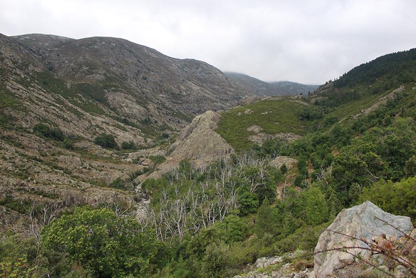 Vallée de Soccia sur la randonnée vers le lac de Creno, en Corse.