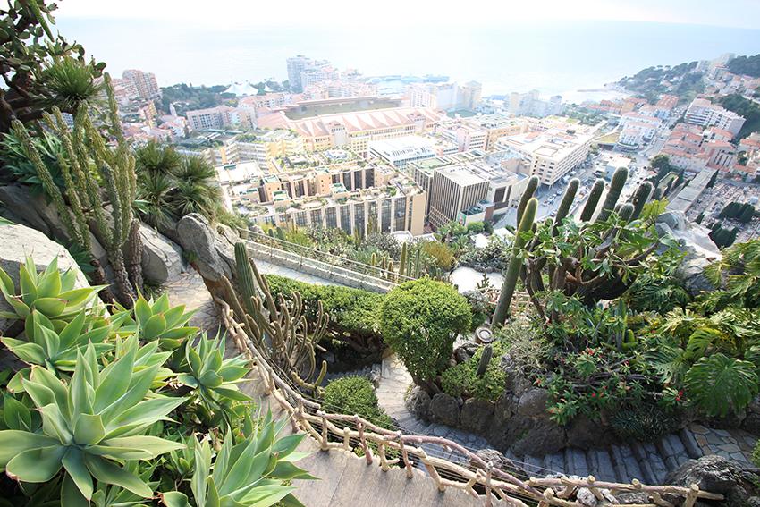 Le jardin exotique de Monaco.