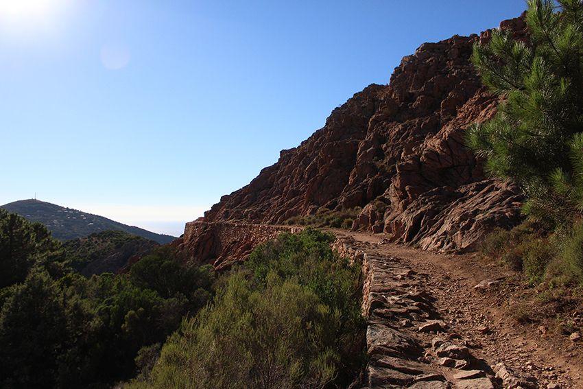Randonnée sur le sentier muletier des calanques de Piana, en Corse.