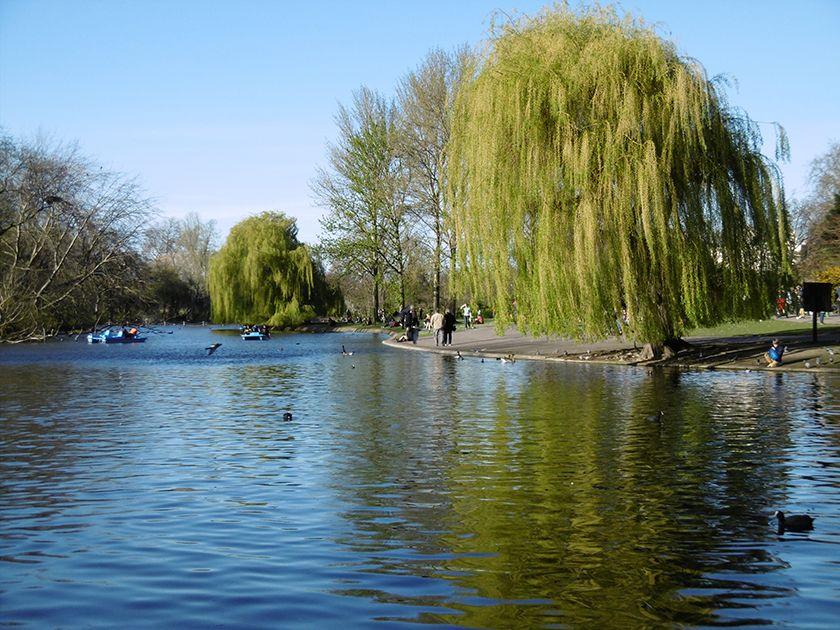 Lac de Regent's Park à Londres.