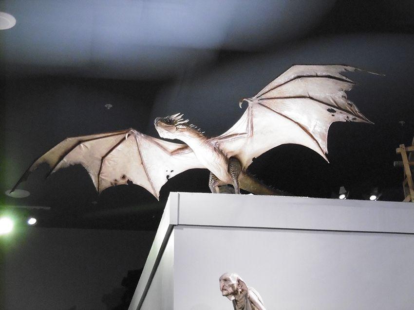 Dragon et Créature au Studio Harry Potter de Londres.