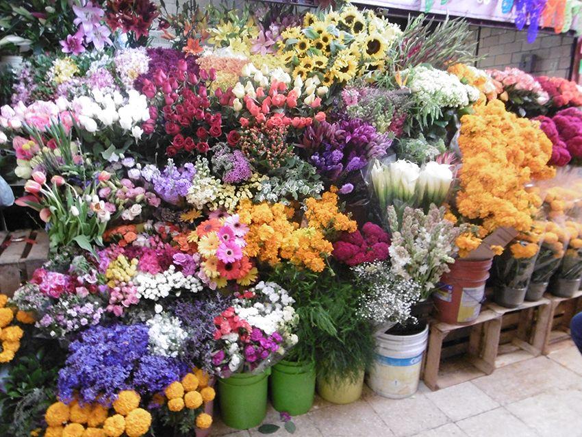 Fleurs sur le marché de Coyoacan à Mexico.