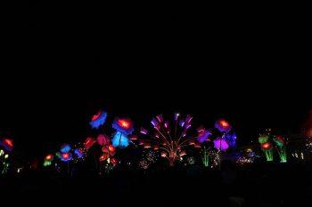Fête des Lumières à Lyon en 2017, promenons-nous dans un jardin lumineux sur la place Bellecour.