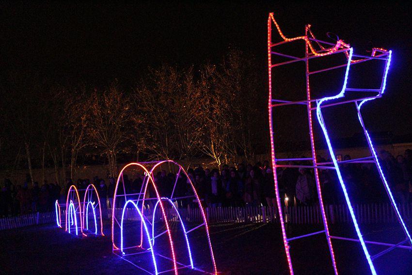 Fête des Lumières à Lyon en 2017, installation lumineuse dragon ou monstre du Loch Ness.