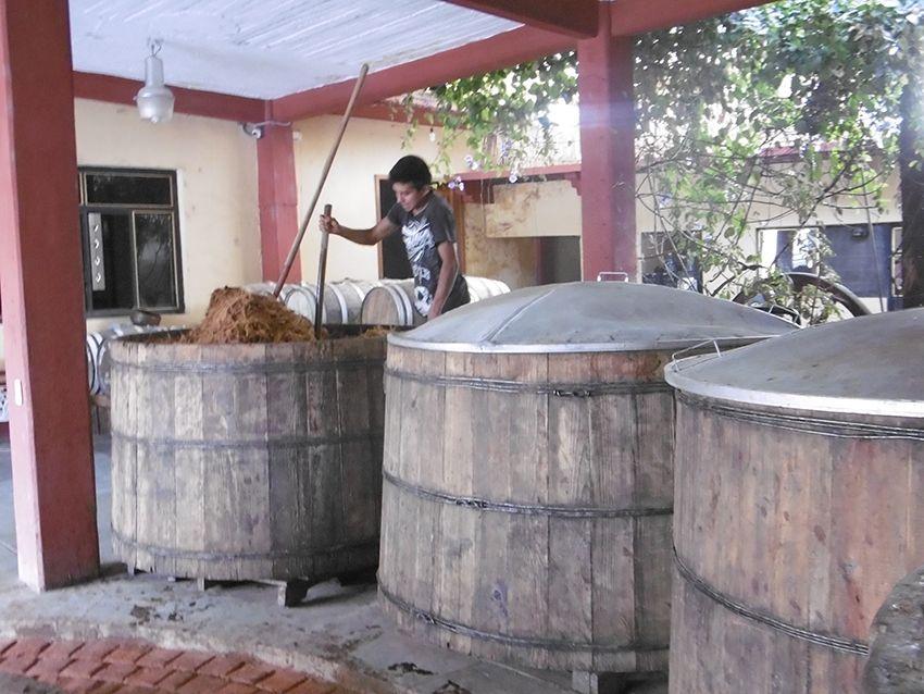 Cuves de fermentation permettant la fabrication du mezcal dans la fabrique el Rey Zapoteco au Mexique.