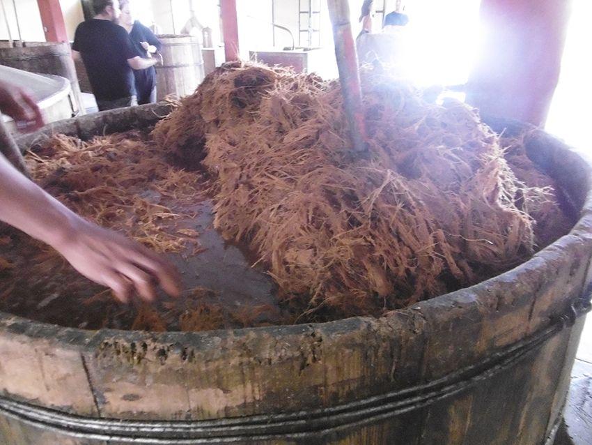 Fermentation du mezcal dans la fabrique el Rey Zapoteco au Mexique.