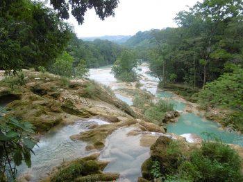Cascades d'Agua Azul dans un cadre naturel enchanteur au Mexique.