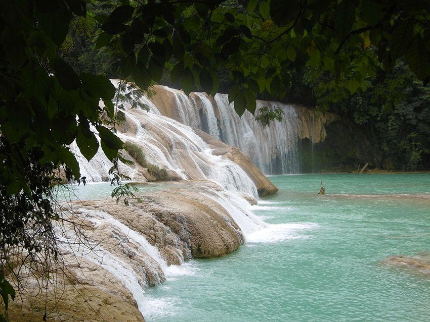 Cascade Agua Azul dans le Chiapas, au Mexique.