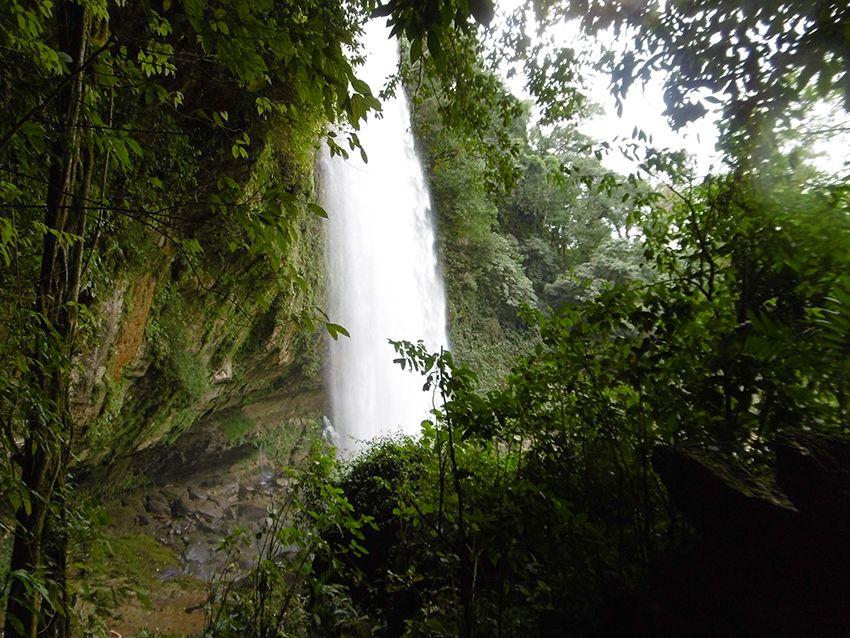 Cascade, chute d'eau de Misol-Ha dans le Chiapas au Mexique.