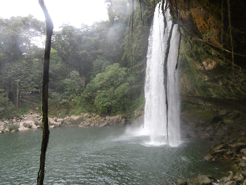 Cascade de Misol-Ha dans le Chiapas au Mexique.