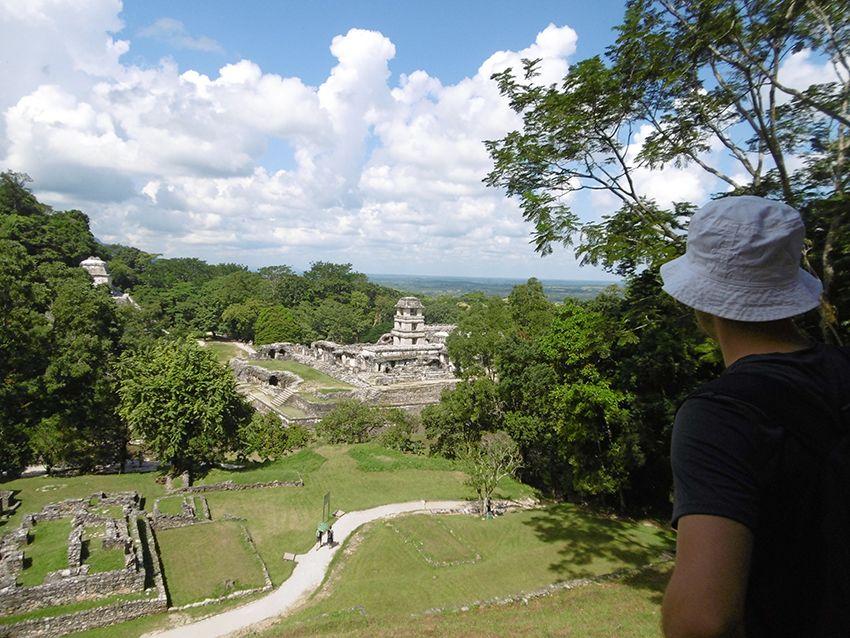 Panorama sur le site de Palenque au Mexique.