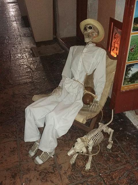 Décoration squelettes pour le dia de los muertos à Campeche au Mexique.