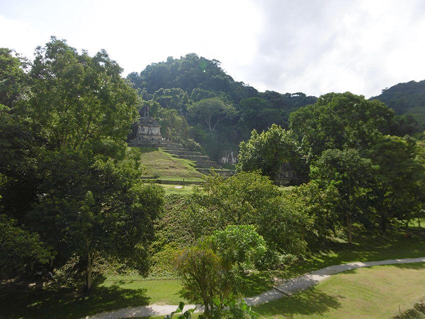 Palenque une cité dans la jungle du Chiapas au Mexique.