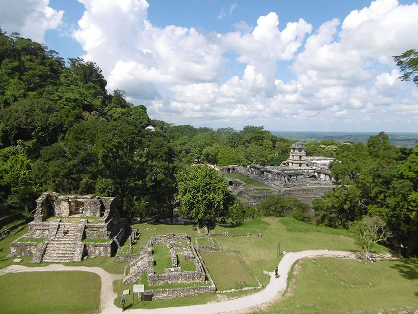 Panorama sur les temples et le palais de Palenque au Mexique.