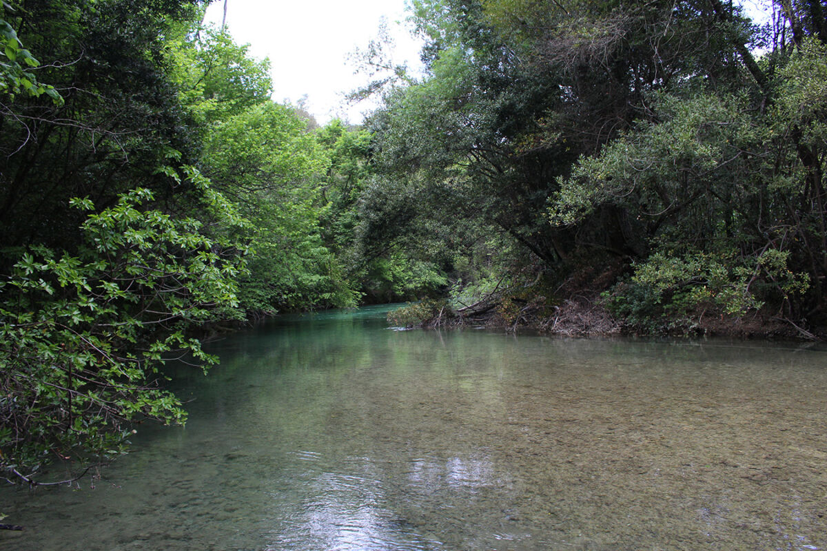 Les Gorges de la Siagne, randonnée Nature sauvage.