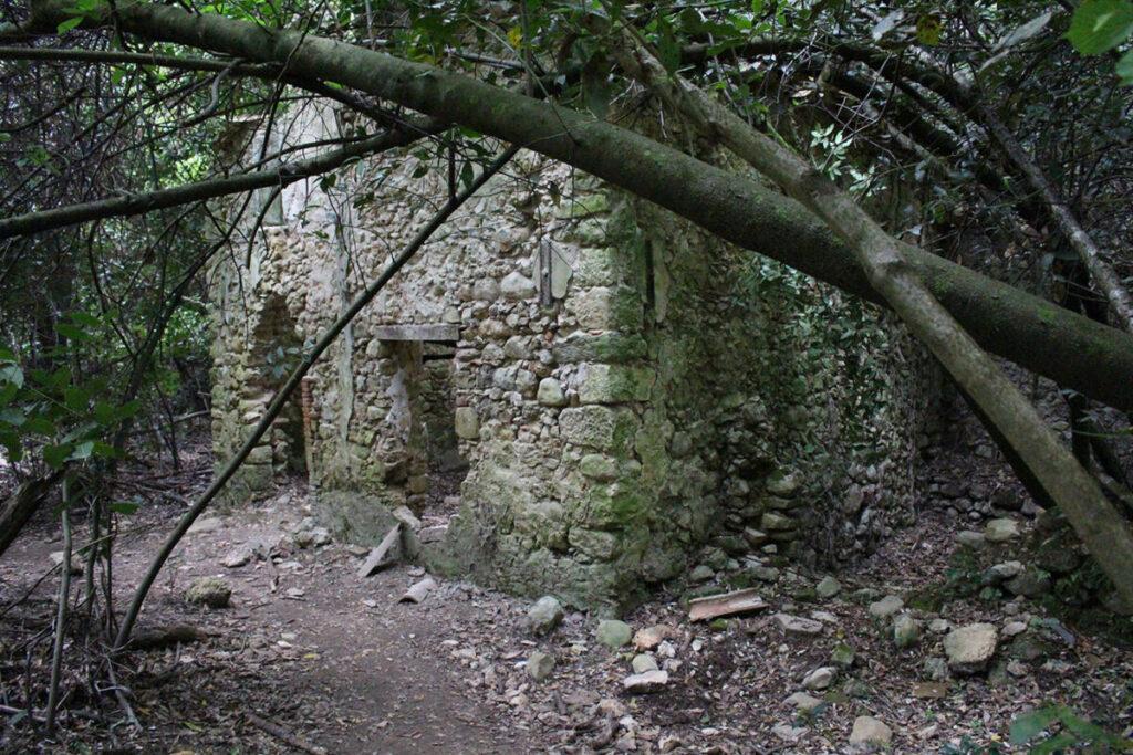 Ruines des Gorges de la Siagne.