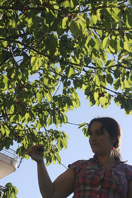 look champêtre autour des boucles d'oreilles cerises